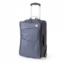 Cabin Trolley Bag Gris